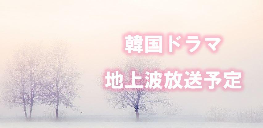 韓 流 ドラマ 新 番組