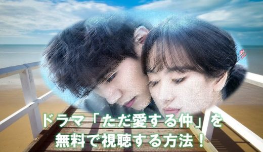 韓国ドラマ「ただ愛する仲」の見逃し動画を全話無料で視聴する方法!