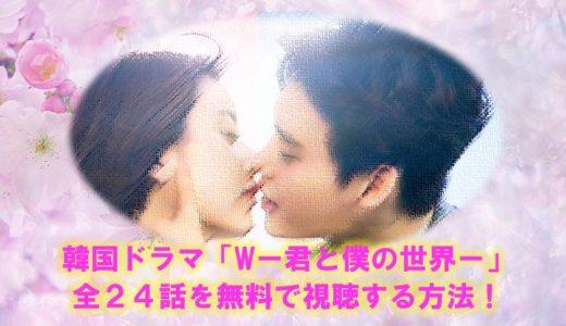 韓国ドラマ「W-君と僕の世界」の見逃し動画を全話無料で視聴する方法!